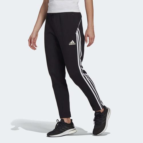 adidas Sportswear Colorblock Kadın Siyah Eşofman Altı (GL9489)